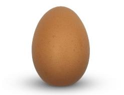 Het ei van Columbus